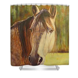 Maggie, Horse Portrait Shower Curtain