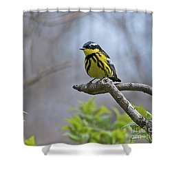 Maggie... Shower Curtain
