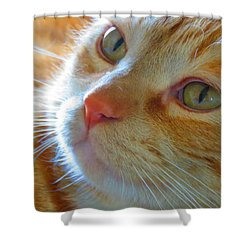 Magic 2 Shower Curtain