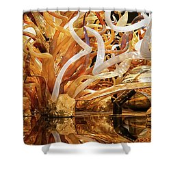 Magic Art In Glass Shower Curtain