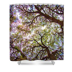 Magic Canopy Shower Curtain