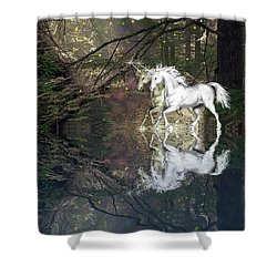Magic Shower Curtain by Diane Schuster