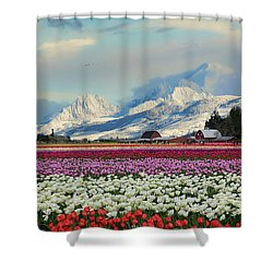 Magic Landscape 1 - Tulips Shower Curtain by Rick Lawler