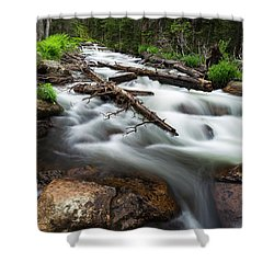 Shower Curtain featuring the photograph Magic Mountain Stream by James BO Insogna