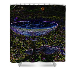 Magic Mushroom Shower Curtain by David Lee Thompson