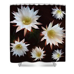 Magical Flower Shower Curtain by Gina Dsgn