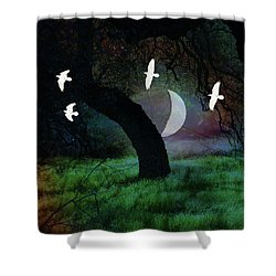 Magical Forest Night Shower Curtain by Robert Ball