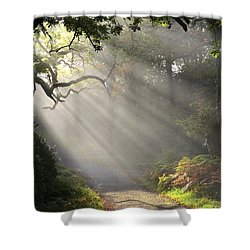Magical Moment In The Park Shower Curtain