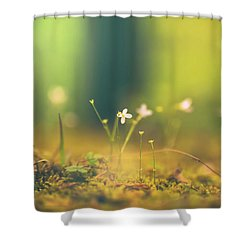 Shower Curtain featuring the photograph Magical Moment by Shane Holsclaw