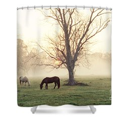 Magical Morning Shower Curtain by Scott Pellegrin