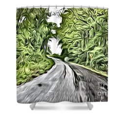 Magical Road Home Shower Curtain
