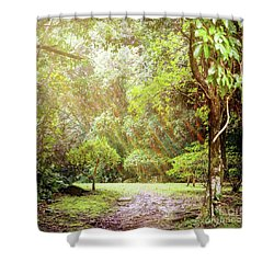 Shower Curtain featuring the photograph Magical Tulgey Wood by Cindy Garber Iverson
