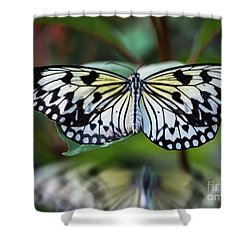 Magical Wings Shower Curtain