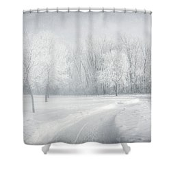 magical Winter day Shower Curtain