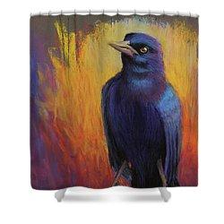 Magnificent Bird Shower Curtain