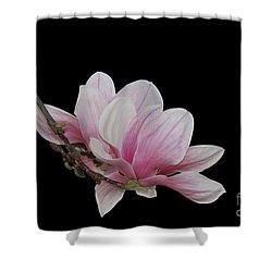 Magnolia #2 Shower Curtain