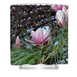 Magnolia Blossoms And Pine Needles Shower Curtain