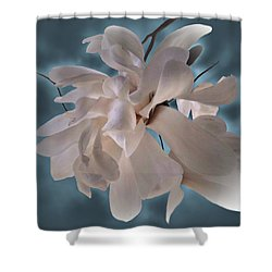 Magnolia Blossoms Shower Curtain by Judy Johnson