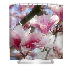 Magnolia Blossoms Shower Curtain by Sandy Keeton