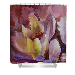 Magnolia Shower Curtain by Donna Acheson-Juillet