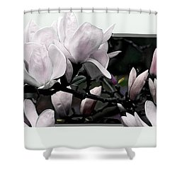 Magnolia Fantasy I Shower Curtain by Madeline Ellis