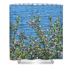 Magnolia Flowering Tree Blue Water Shower Curtain
