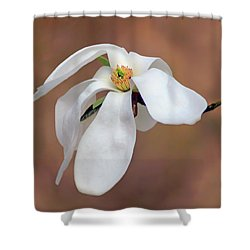 Shower Curtain featuring the photograph Magnolia Grace by Nikolyn McDonald