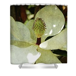 Magnolia Grande Shower Curtain by Susanne Van Hulst