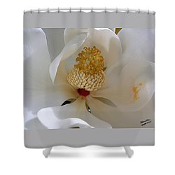 Magnolia Happiness Shower Curtain