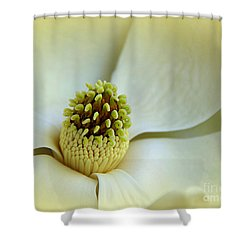 Shower Curtain featuring the photograph Magnolia Heart II by Lisa L Silva