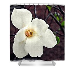 Magnolia Memories 2 Shower Curtain by Sarah Loft