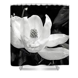 Magnolia Memories 3- By Linda Woods Shower Curtain