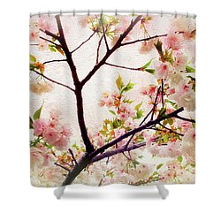Shower Curtain featuring the photograph Asian Cherry Blossoms by Jessica Jenney