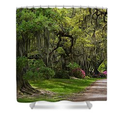 Magnolia Plantation And Gardens Shower Curtain by Kathy Baccari