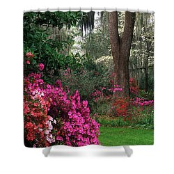 Shower Curtain featuring the photograph Magnolia Plantation - Fs000148a by Daniel Dempster