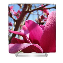 Magnolia Tree Pink Magnoli Flowers Artwork Spring Shower Curtain by Baslee Troutman