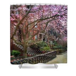 Shower Curtain featuring the photograph Magnolia Trees In Spring - Back Bay Boston by Joann Vitali