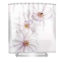 Magnolia Trio Shower Curtain