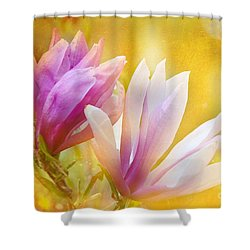 Magnolias Shower Curtain by Elaine Manley