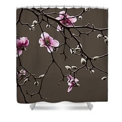 Magnolias In Bloom Shower Curtain by Rob Amend