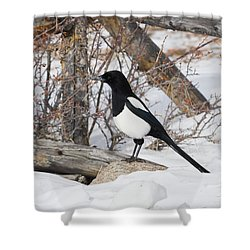 Magpie - 6892 Shower Curtain