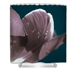 Mahalo Shower Curtain by Bobby Villapando