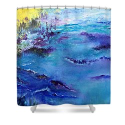 Maine Coast, First Impression Shower Curtain