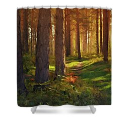 Shower Curtain featuring the photograph Maine Forest Sunset by David Dehner