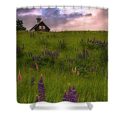 Maine Lupines And Home After Rain And Storm Shower Curtain