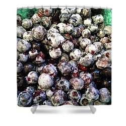 Shower Curtain featuring the photograph Maine Pearls by Olivier Calas