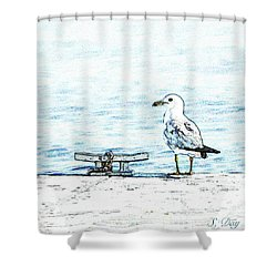 Maine Seagull Shower Curtain