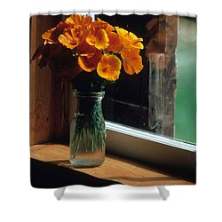 Maine Windowsill Shower Curtain by Laurie Paci