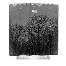 Majestic  Shower Curtain by Annette Berglund