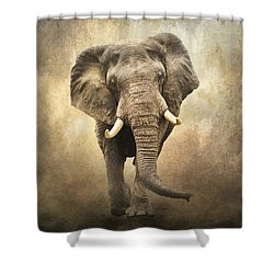 Shower Curtain featuring the photograph Majestic Beauty by Brian Tarr